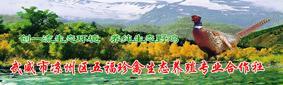 武威市凉州区五福珍禽生态养殖专业合作社