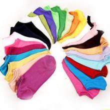 供应糖果色船袜全棉女袜夏船袜短袜对对袜袜子卡通袜糖果色船袜批发