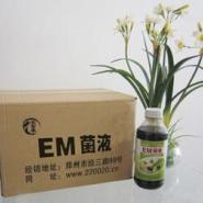 湖北重庆哪里有卖农富康EM菌种菌图片