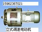 供应YCT112#550W调速电机YCT112550W调速电机