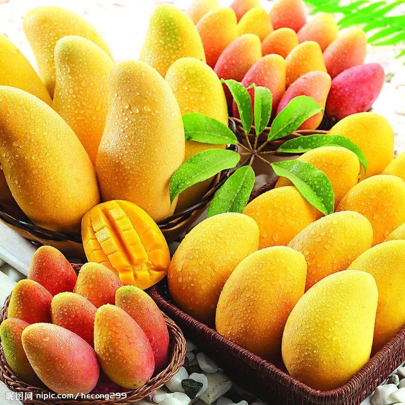 供应新鲜水果优惠批发