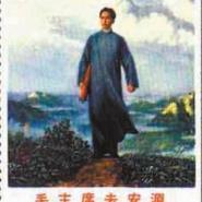 邮票42图片
