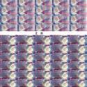 肇庆回收购第四版人民币大炮筒图片