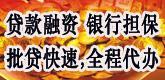 金鑫投资有限公司