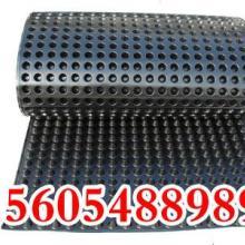 供应国标安徽排水板