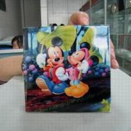 爱普生最高效塑料U盘外壳彩绘机图片
