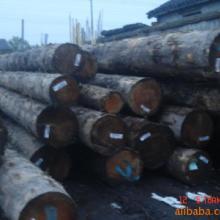 供应大红酸枝木材进口报关流程批发