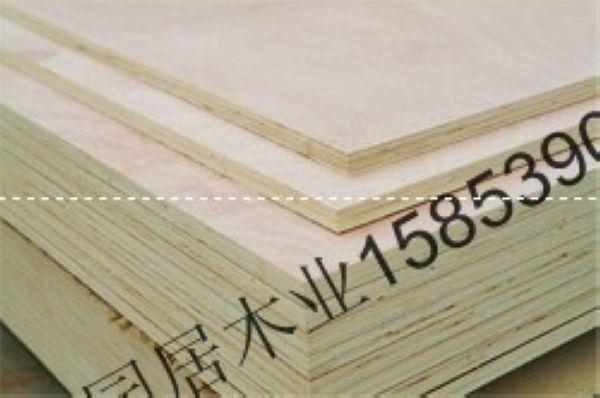 供应刀模板桦木多层板胶合板
