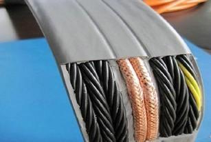 变频器专用电缆图片/变频器专用电缆样板图 (2)