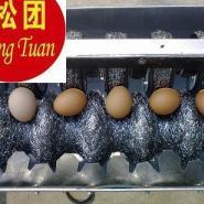 小型洗蛋机防水型图片