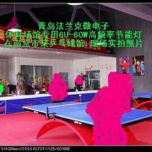 供应工厂照明系统的设计羽毛球场用灯具乒乓球场用灯工厂照明系统的设计批发