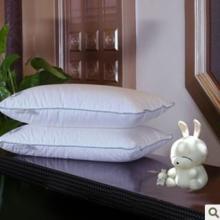 供应白鸭绒儿童羽绒枕芯/儿童枕头芯