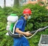 供应专业为星级酒店提供杀虫灭鼠灭蟑螂服务!中山灭蟑螂、灭老鼠、灭蚊子、灭苍蝇、灭跳蚤、灭臭虫、灭蚂蚁、灭螨虫