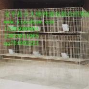 养殖设备养殖笼具鸡鸽兔笼料盒食盒图片