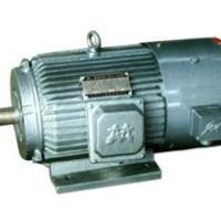 供应YBP系列变频调速三相异步电动机