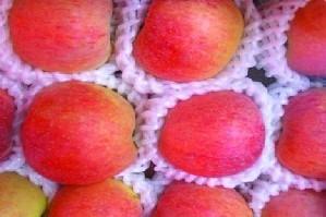 供应新疆阿克苏苹果