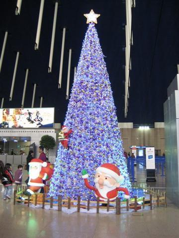 样板 圣诞树弧形图 圣诞树-绿植租摆北京怡嘉花revit网轴中如何绘制图片图片