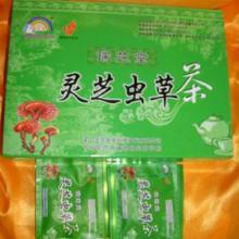 供应 灵芝虫草茶 保健茶