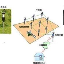 供应BY-WSK物联网智能温室控制系统批发