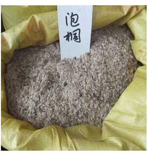 供应泡桐种子播种方法种植栽培技术图片