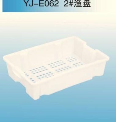 羽佳冷冻盘图片/羽佳冷冻盘样板图 (1)