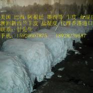 头层黄牛皮进口运输/香港牛皮运输图片
