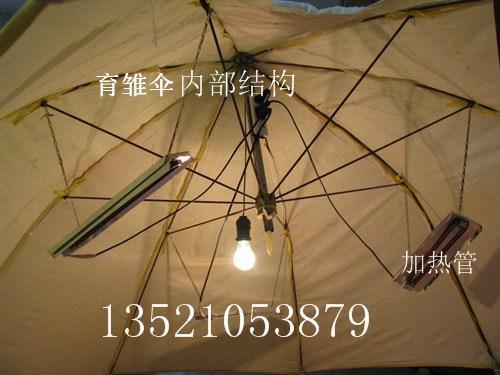 供应西藏育雏伞西藏保温伞