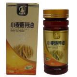 供应小麦胚芽油