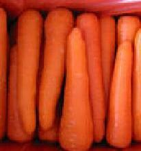 供应胡萝卜肉脯罐头
