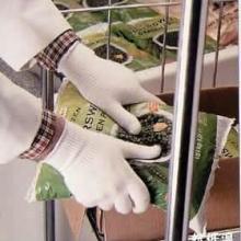 供应Ansell安塞尔冷冻室工作手套