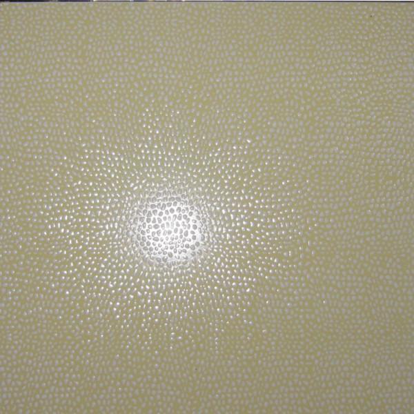 托玛琳汗蒸房普通砖抛光砖抛金地砖图片