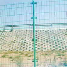 供应安平生产销售圈鸡网,塑料养殖网,养殖场围栏 圈地围网 养殖场圈地围栏批发