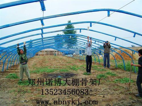 钢结构蔬菜大棚价格_