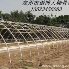 供应郑州无立柱蔬菜温室大棚骨架支架设备图片