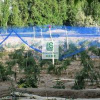 绿盛保证产量防鸟网供销商