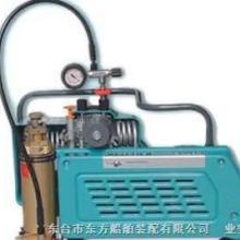 供应呼吸器充气泵特点
