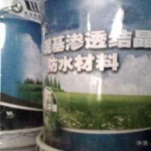 供应用于防水的水泥基渗透结晶防水涂料专业厂家陕西首选图片