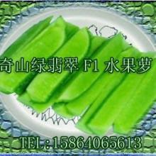 供应奇山绿翡翠杂交水果青萝卜种子 进口水果萝卜种子
