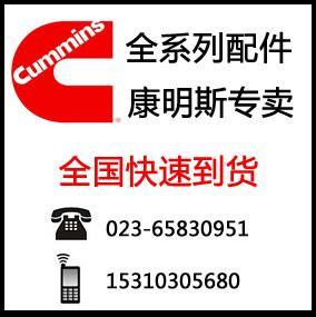 康明斯4089216KITHED价格及图片、图库、图片大全