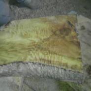 出售金丝楠树桩花纹板图片