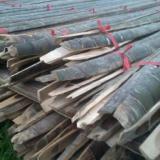 供应大量生产新鲜大棚竹片