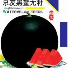 供应有籽和无籽西瓜