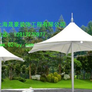 上海金山膜伞生产图片