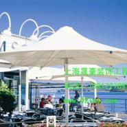 闵行景观膜结构伞图片