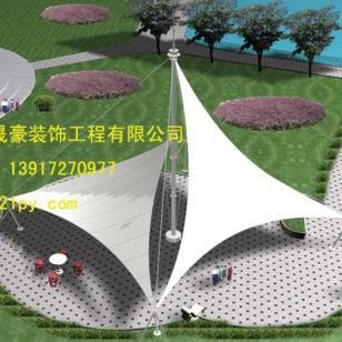 浙江萧山膜伞生产图片