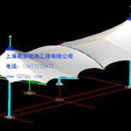 上海杨浦膜结构伞图片