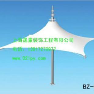 杭州膜伞生产批发图片