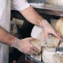 供应Ansell一次性PVC手套34-500防化手套批发-上海世举图片