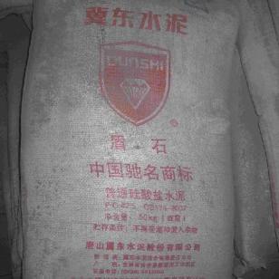 盾石牌普通硅酸盐水泥图片
