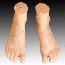 供应康谊牌按摩足17CM-足部按摩器-上海足针灸模型厂家-优质按摩脚训练模型